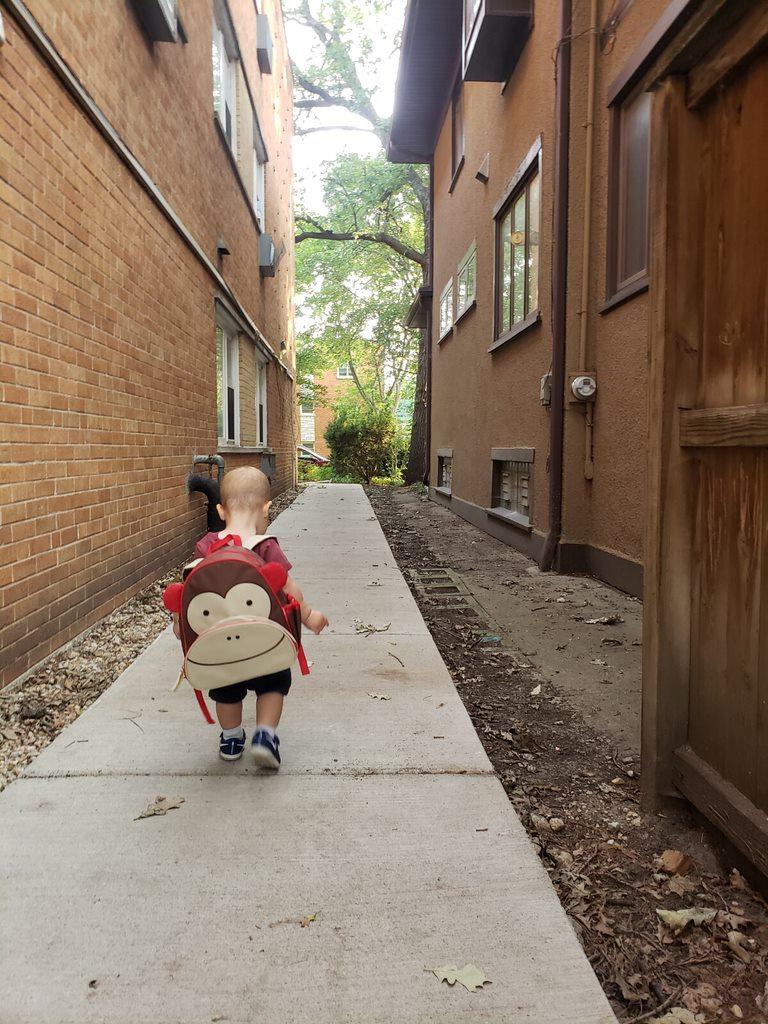 Royal Wearing Monkey Backpack